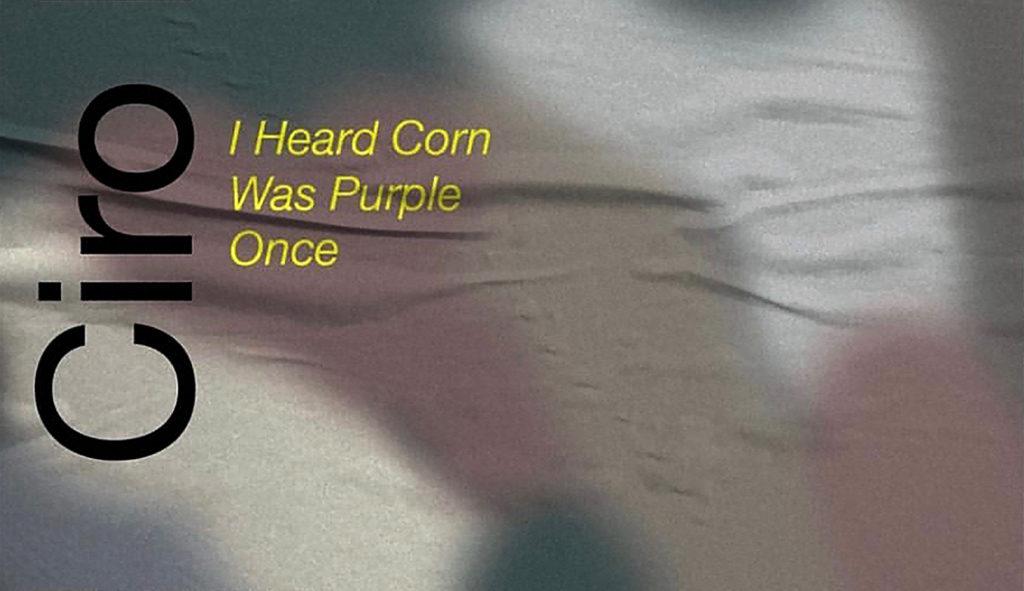 Ciro Duclos en zijn eerste solo expositie 'I Heard Corn Was Purple Once'